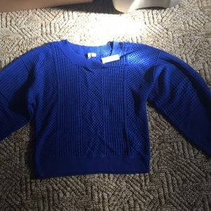 Anthropologie blue sweater